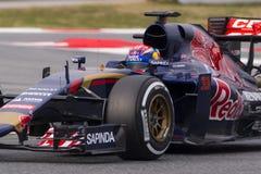 Chaufför Max Verstappen Team Toro Rosso Arkivfoto