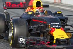 Chaufför Verstappen Team Red Bull Arkivfoto