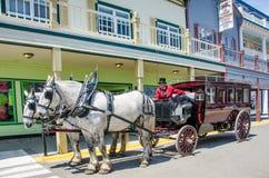 Chauffören av dragen vagn för tappning hästen väntar på royaltyfri fotografi