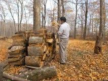 Chauffage avec du bois Photographie stock libre de droits