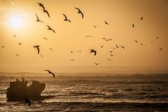 Chauffez l'image modifiée la tonalité d'un coucher du soleil avec une épave de bateau photos libres de droits