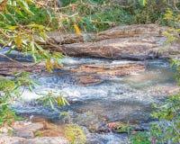 Chauga rzeka Obraz Stock