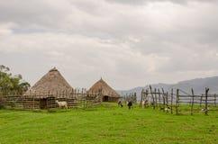 Chaume traditionnelle, argile et maisons en bois d'éleveur de moutons en montagnes du Cameroun, Afrique Images stock