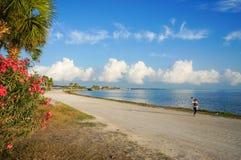 Chaussée de Dunedin, la Floride, Etats-Unis photo libre de droits