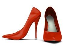 chausse des femmes Photo stock