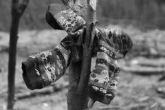 Chaussettes après pluie Images stock