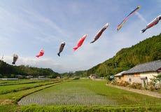 Chaussettes de vent japonaises de koi-nobori soufflant dans le vent Photos libres de droits