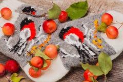Chaussettes rustiques faites main avec un modèle de bouvreuil sur le fond en bois, pommes sauvages rouges Hiver et Noël Photo libre de droits