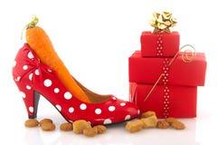Chaussure adulte avec le raccord en caoutchouc Photos libres de droits