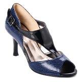 chaussure chaussure de femme sur un fond Photographie stock libre de droits