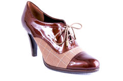Chaussure d'affaires de Womans Photos stock