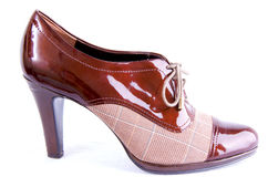 Chaussure d'affaires de Womans Photographie stock