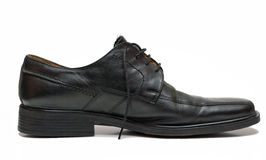 Chaussure d'homme photos stock