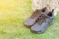 Chaussure de course de chaussures Image stock