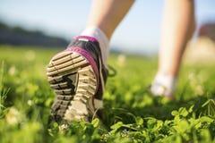 Chaussure de course unique en gros plan sur l'herbe verte Photographie stock