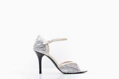 Chaussure de danse Image stock