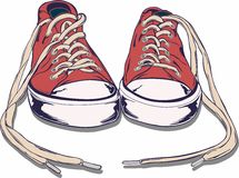 Chaussure de gymnase Photo libre de droits