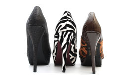 Chaussure de hauts talons Photo stock