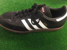 Chaussure de samba d'Adidas à vendre Image libre de droits