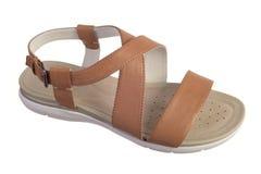 Chaussure de sandale de Brown Photographie stock libre de droits