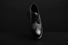 chaussure de style de l'Oxford Images libres de droits