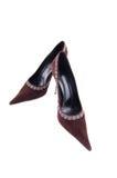 Chaussure de velours de haut talon Photo libre de droits