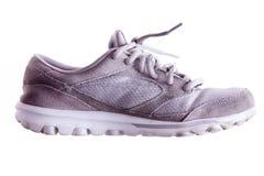 Chaussure grise légèrement utilisée de sports Photographie stock libre de droits