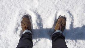 Chaussure sur la neige Images stock