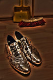 Chaussures argentées Photos libres de droits