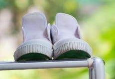 Chaussures blanches sèches sur le fond vert Photos stock