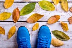 Chaussures bleues de sports Lames d'automne colorées Backgrou en bois blanc Photos stock