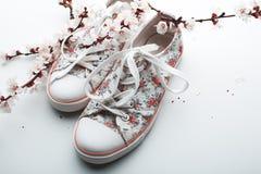 Chaussures d'été et fleurs d'abricot Photographie stock