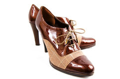 Chaussures d'affaires de Womans Images stock