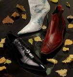 Chaussures d'automne images libres de droits
