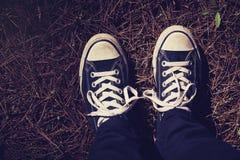 Chaussures d'espadrilles au-dessus des aiguilles de pin dans la vue supérieure de forêt Images libres de droits