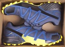 Chaussures d'espadrilles dans la boîte Vue supérieure Photographie stock
