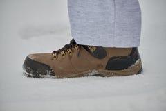 Chaussures d'hiver pour des sports Photographie stock