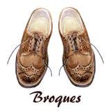 Chaussures d'hommes illustration libre de droits