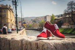 Chaussures d'hommes Photo libre de droits