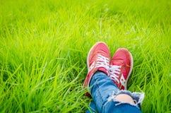 Chaussures d'une femme d'adolescent sur le champ d'herbe Photo libre de droits