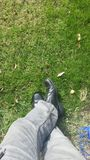 Chaussures dans l'herbe Photos stock