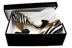 Chaussures dans un cadre Image stock