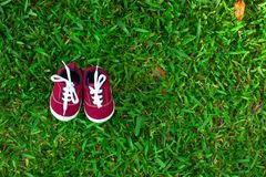 Chaussures de ch?ri rouges images libres de droits