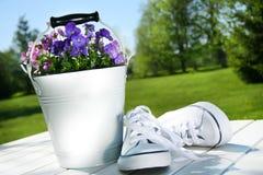 Chaussures de course blanches Image libre de droits