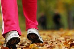 Chaussures de course de jambes de coureur. Femme pulsant en parc d'automne Photographie stock libre de droits