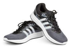 Chaussures de course, espadrilles ou entraîneurs d'Adidas d'isolement sur le blanc images libres de droits