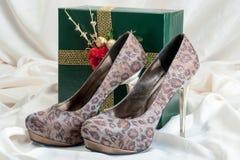 Chaussures de femme Photo libre de droits