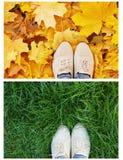 Chaussures de jambes sur l'herbe verte Image libre de droits