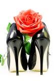 Chaussures de Madame et rose de rouge Images stock