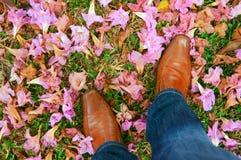 chaussures de mens Image libre de droits
